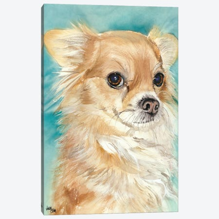 Sophie - Chihuahua Canvas Print #JDI144} by Judith Stein Canvas Art Print