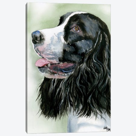 Spring Time - Springer Spaniel Canvas Print #JDI146} by Judith Stein Art Print
