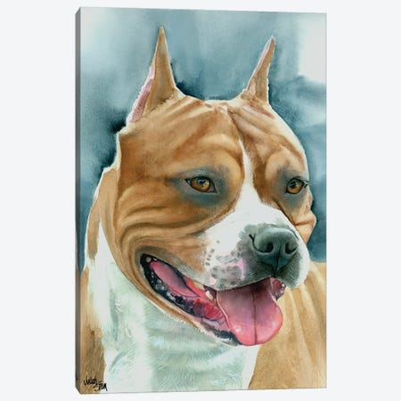Staffy - American Staffordshire Dog Canvas Print #JDI148} by Judith Stein Canvas Art
