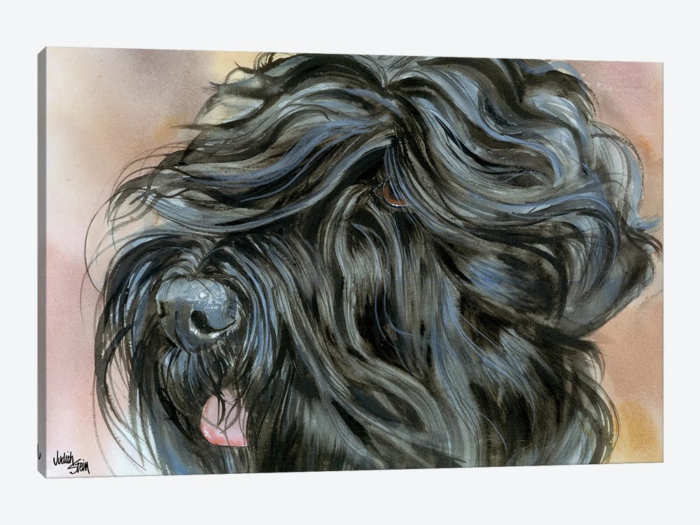 Stalin's Dog - Black Russian Terrier by Judith Stein 1-piece Canvas Wall Art