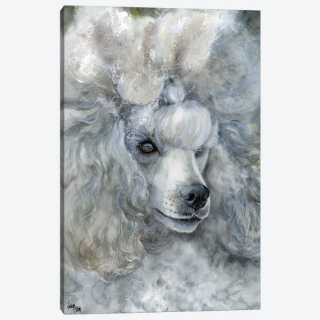 Sterling Silver - Miniature Poodle Canvas Print #JDI150} by Judith Stein Canvas Art Print