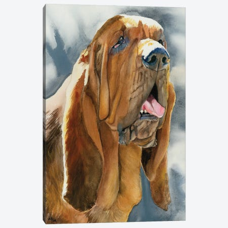 The Nose Knows - Bloodhound Canvas Print #JDI154} by Judith Stein Canvas Art
