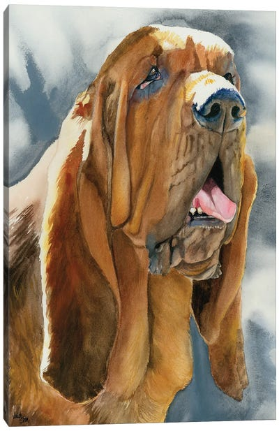 The Nose Knows - Bloodhound Canvas Art Print