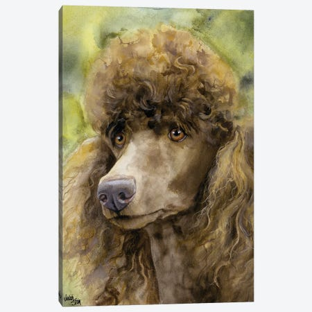 Truffle Face - Brown Standard Poodle  Canvas Print #JDI159} by Judith Stein Canvas Art Print