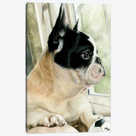 Ulysses Canvas Print #JDI160} by Judith Stein Canvas Art