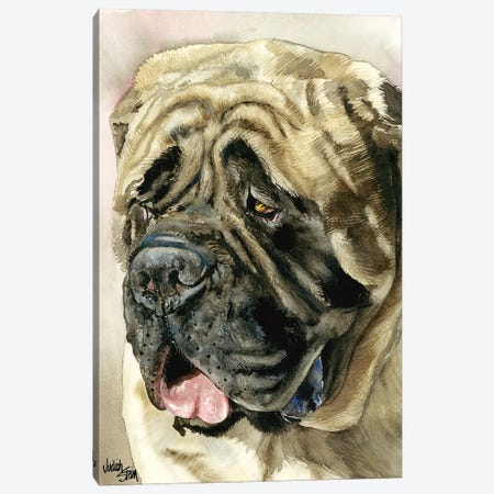 Benevolent Behemoth - English Mastiff Canvas Print #JDI16} by Judith Stein Canvas Artwork