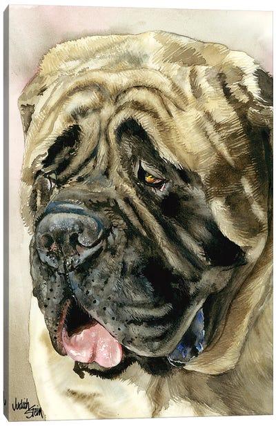 Benevolent Behemoth - English Mastiff Canvas Art Print
