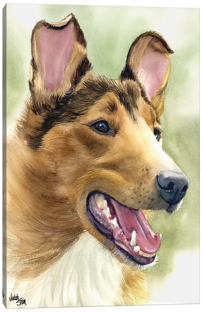 Woof to Watch - Smooth Coat Collie Canvas Art Print