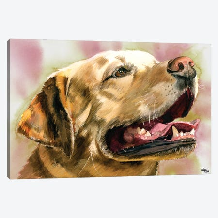 Yeller Feller - Yellow Labrador Retriever Canvas Print #JDI172} by Judith Stein Canvas Art Print