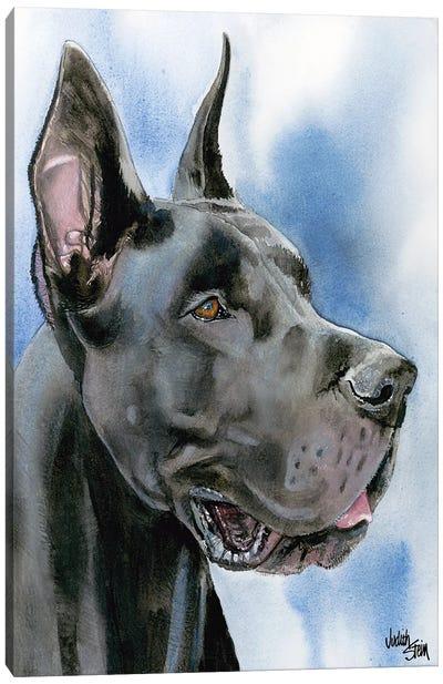 Big Danish - Black Great Dane Canvas Art Print