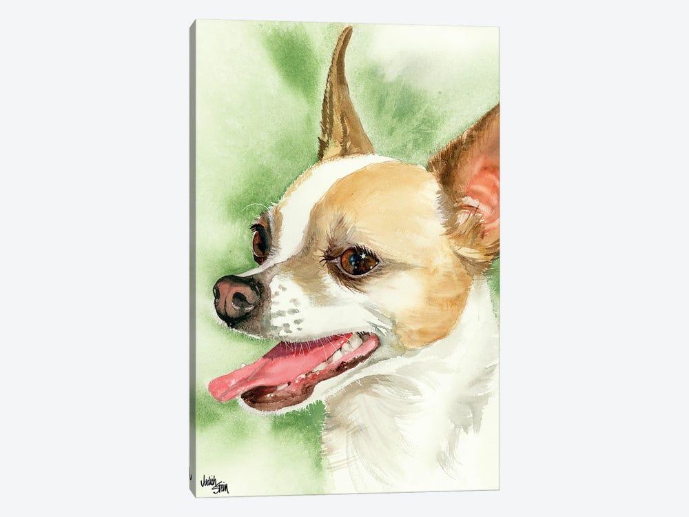 !Ay Chihuahua! Chihuahua by Judith Stein 1-piece Canvas Print