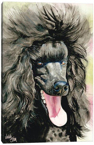 Black Magic - Black Poodle Canvas Art Print