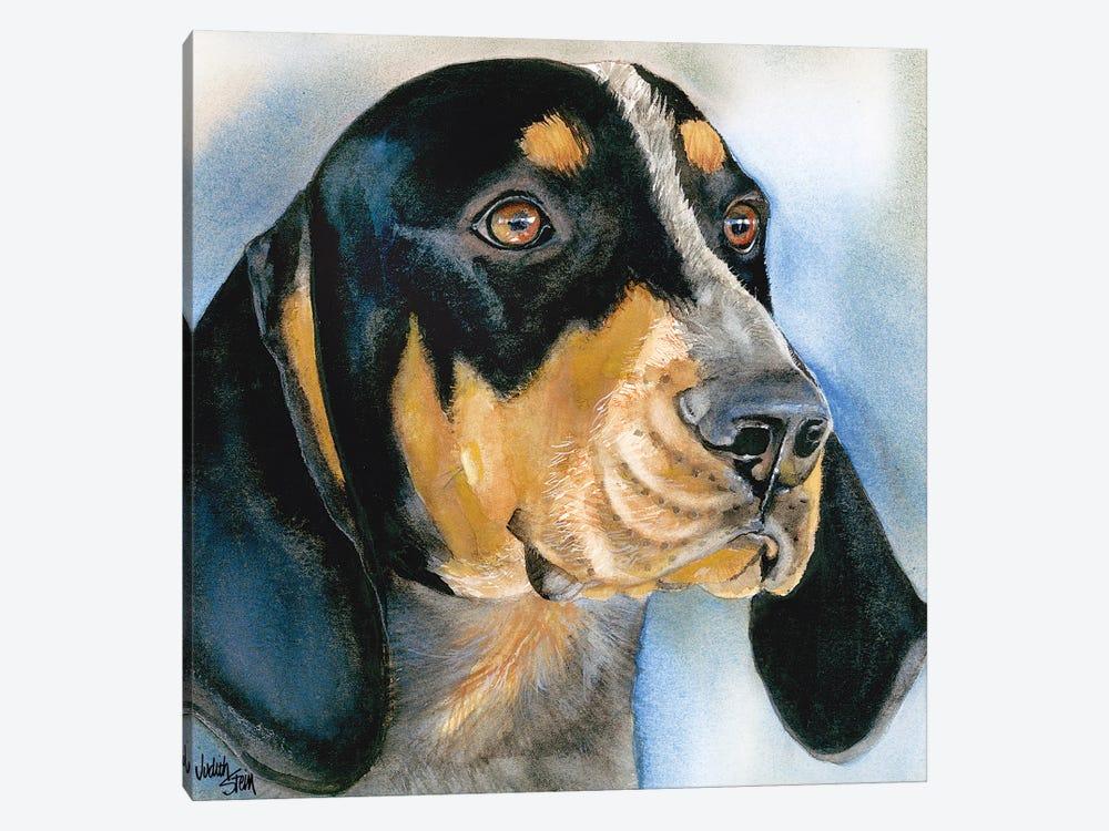 Blue Boy - Bluetick Coonhound by Judith Stein 1-piece Canvas Artwork