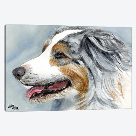 Blue Merle Aussie - Australian Shepherd Canvas Print #JDI24} by Judith Stein Art Print