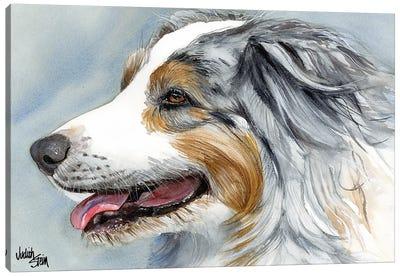 Blue Merle Aussie - Australian Shepherd Canvas Art Print