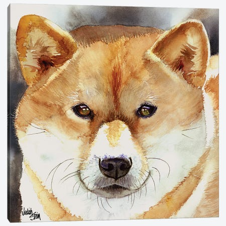 Bold Spirit - Shiba Inu Canvas Print #JDI25} by Judith Stein Canvas Print