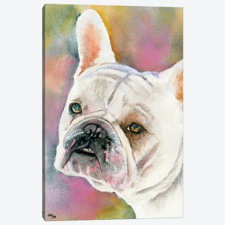 Bouledogue Francais - Cream French Bulldog Canvas Print #JDI28} by Judith Stein Canvas Artwork