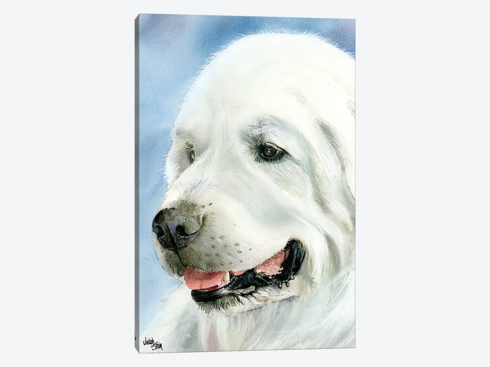 A Certain Elegance - Great Pyrenees by Judith Stein 1-piece Canvas Art
