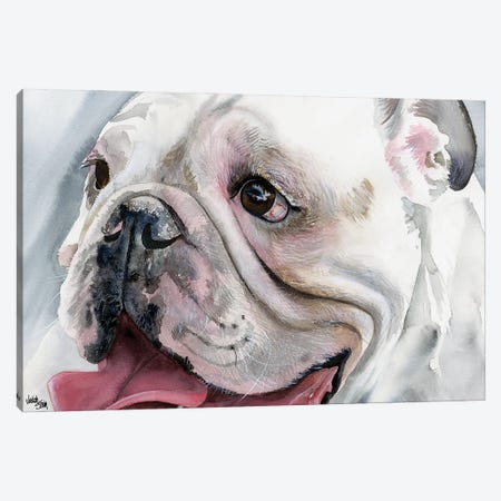 Bull's Eye - English Bulldog Canvas Print #JDI32} by Judith Stein Canvas Art Print