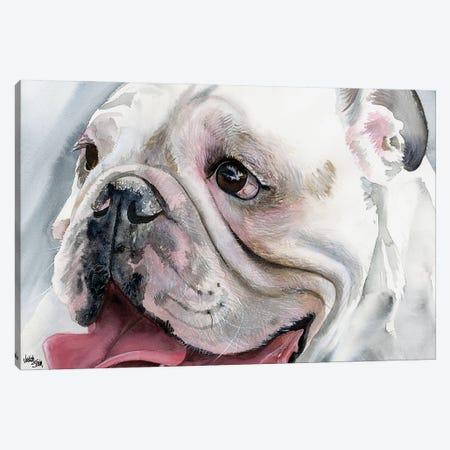 Bull's Eye - English Bulldog Canvas Print #JDI32} by Judith Stein Canvas Art Print