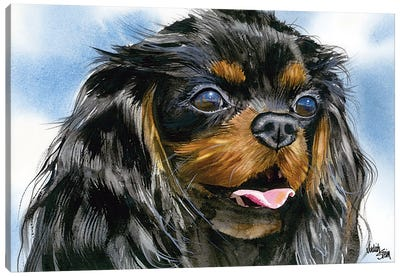 Cavalier - Cavalier King Charles Spaniel - Black and Tan Canvas Art Print
