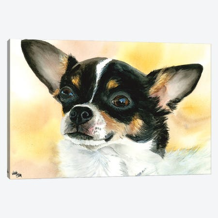 Chi Chi - Chihuahua Dog Canvas Print #JDI36} by Judith Stein Canvas Wall Art