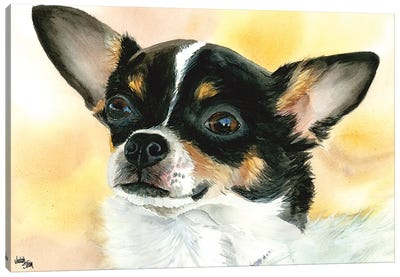 Chi Chi - Chihuahua Dog Canvas Art Print