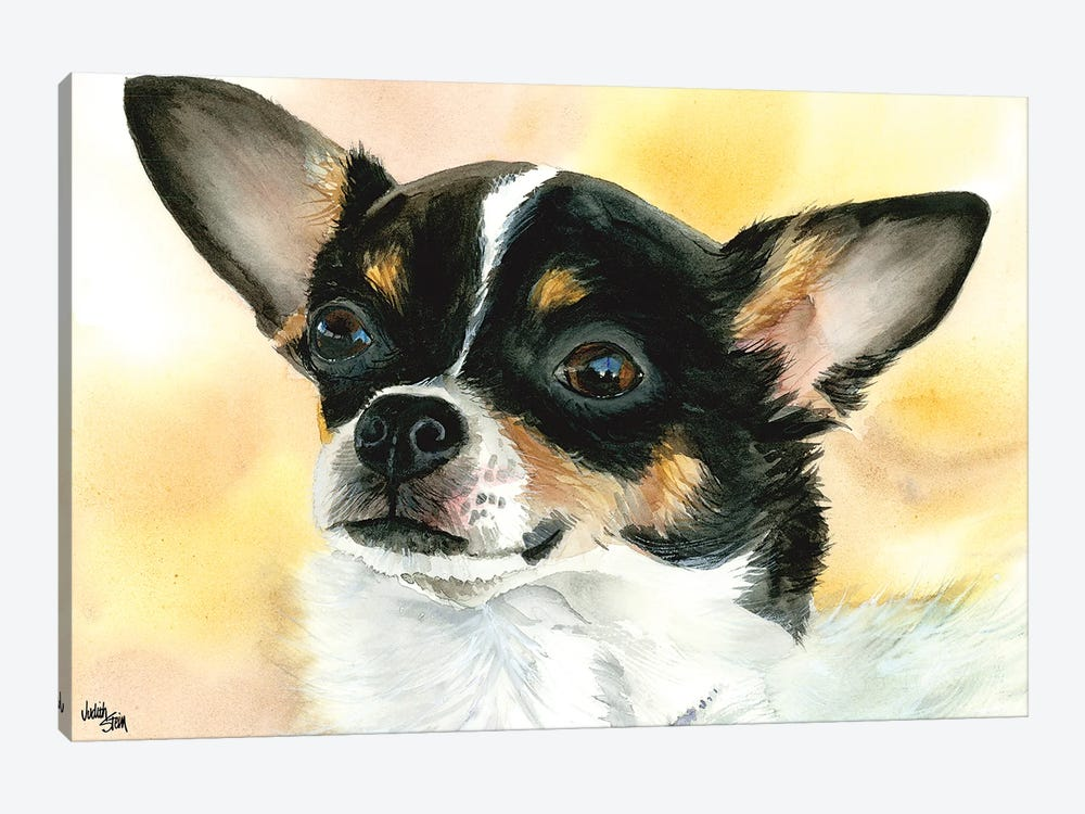 Chi Chi - Chihuahua Dog by Judith Stein 1-piece Canvas Artwork