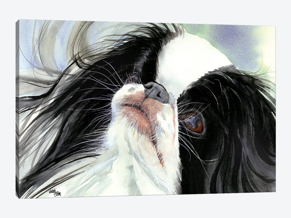 Chin Spin - Japanese Chin by Judith Stein 1-piece Canvas Print