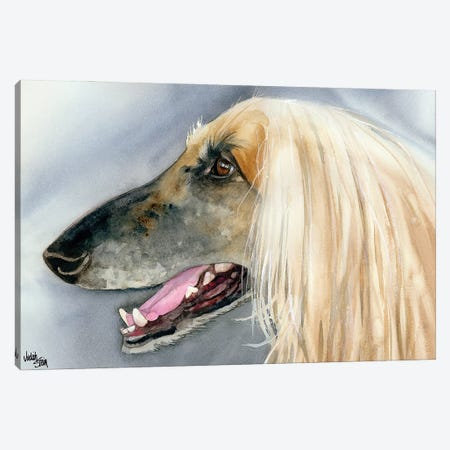 Afghan Hound Canvas Print #JDI3} by Judith Stein Canvas Art