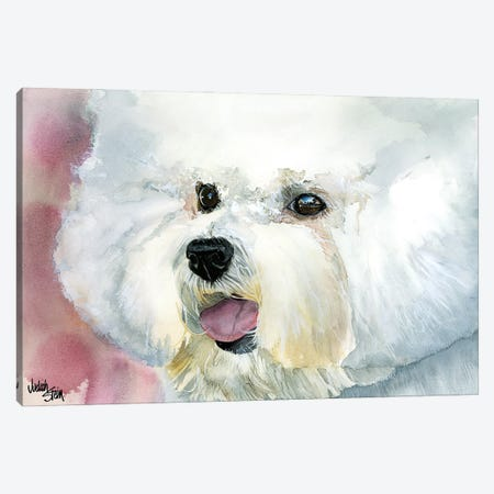Curly Cue - Bichon Frise' Canvas Print #JDI47} by Judith Stein Art Print