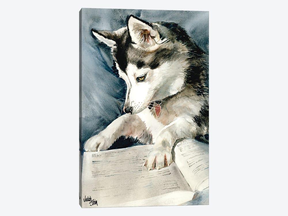 Dog Eared by Judith Stein 1-piece Canvas Art Print