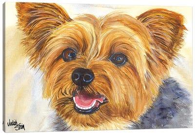 Duke - Blue Yorkshire Terrier Canvas Art Print