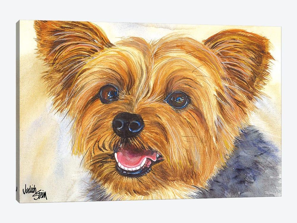 Duke - Blue Yorkshire Terrier by Judith Stein 1-piece Art Print