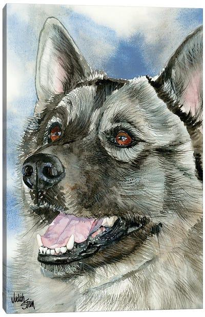 Elkie - Norwegian Elkhound Canvas Art Print
