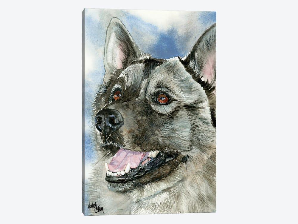Elkie - Norwegian Elkhound by Judith Stein 1-piece Canvas Wall Art