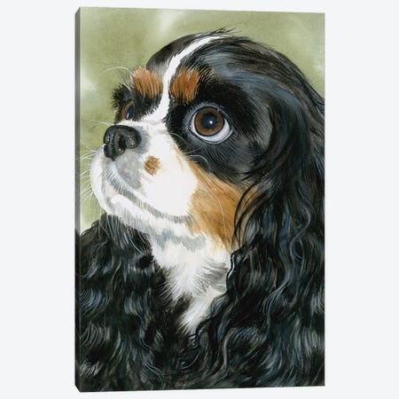 Fit for a King - Cavalier King Charles Spaniel Tri-Color Canvas Print #JDI59} by Judith Stein Art Print