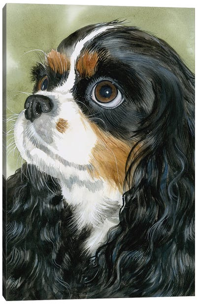Fit for a King - Cavalier King Charles Spaniel Tri-Color Canvas Art Print