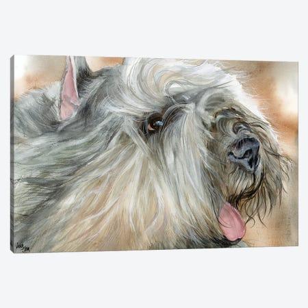 Flanders Cattle Dog - Bouvier des Flandres Canvas Print #JDI60} by Judith Stein Canvas Artwork