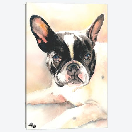 Frenchie Canvas Print #JDI61} by Judith Stein Canvas Art