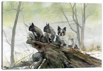 Frenchies in the Mist Canvas Art Print