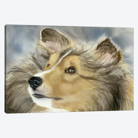 Good Company - Shetland Sheepdog Canvas Print #JDI70} by Judith Stein Canvas Art Print
