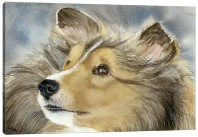 Good Company - Shetland Sheepdog Canvas Art Print