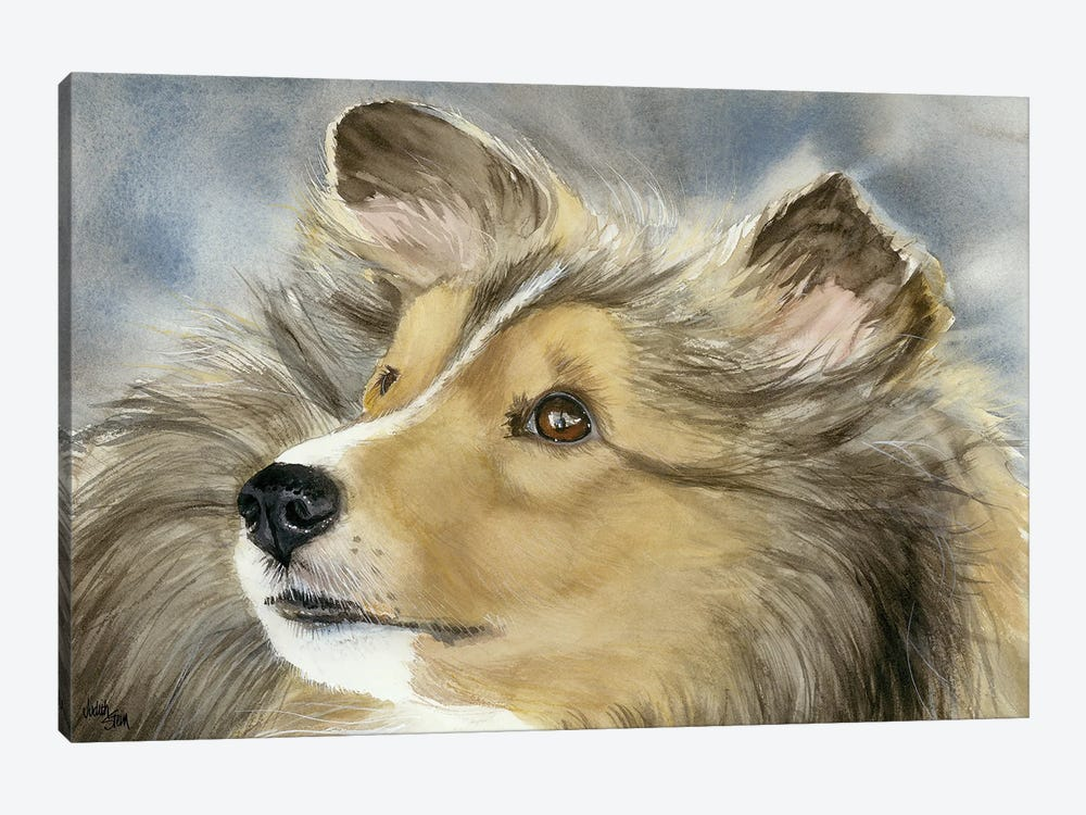 Good Company - Shetland Sheepdog by Judith Stein 1-piece Canvas Artwork