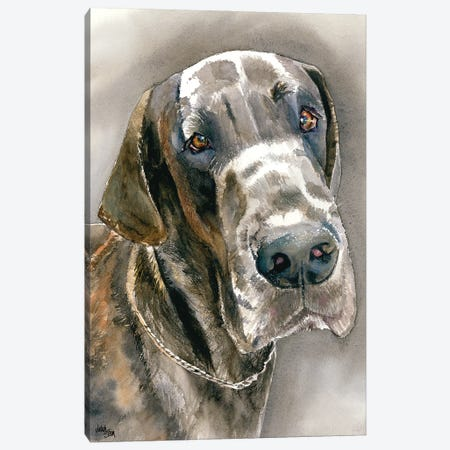 Great Dane Canvas Print #JDI71} by Judith Stein Canvas Print