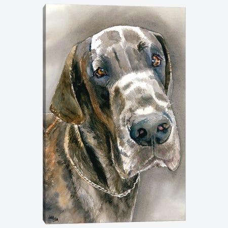 Great Dane Canvas Print #JDI71} by Judith Stein Canvas Print