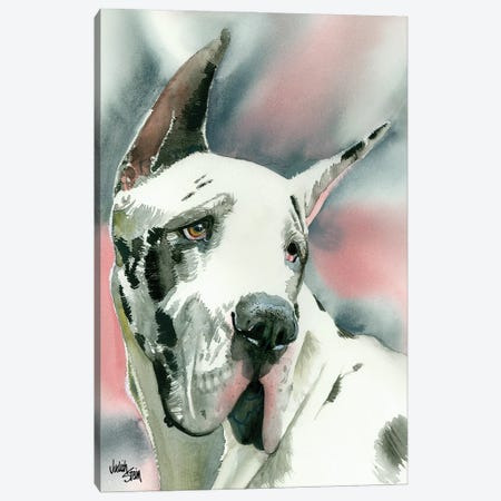 Harlequin Romance - Black & White Great Dane Canvas Print #JDI76} by Judith Stein Canvas Wall Art
