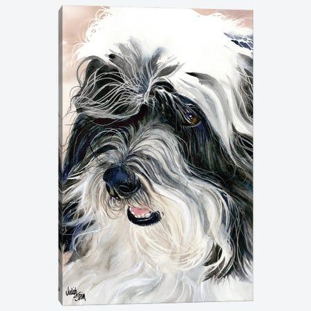 Havana Silk Dog - Havanese Canvas Print #JDI77} by Judith Stein Canvas Wall Art