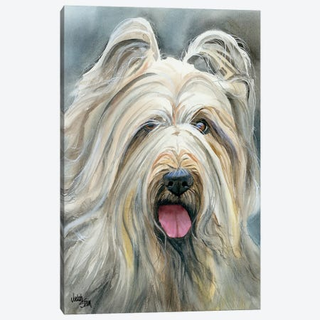 Heart Wrapped in Fur - Briard Canvas Print #JDI78} by Judith Stein Canvas Print