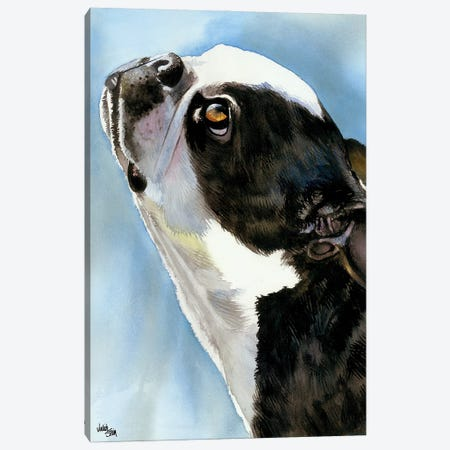 Here's Looking at You - Boston Terrier 3-Piece Canvas #JDI79} by Judith Stein Canvas Print